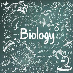 زیست شناسی